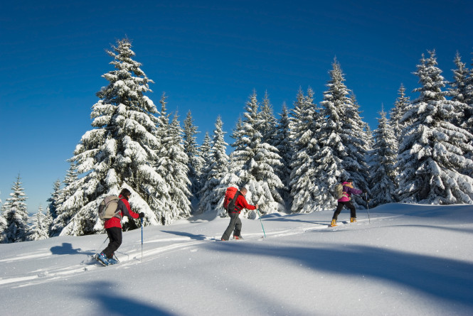 raquette-neige-randonnee-balade-activité-tourisme-evolution2