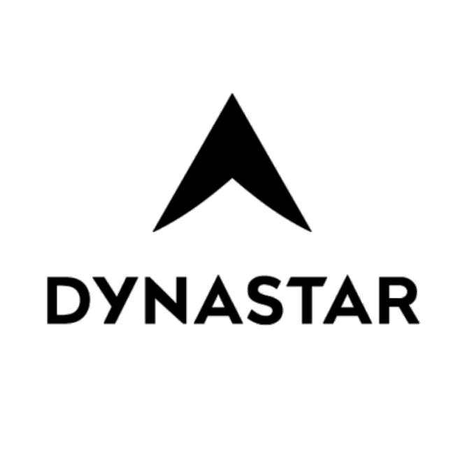 logo-dynastar-partenaire-evolution2