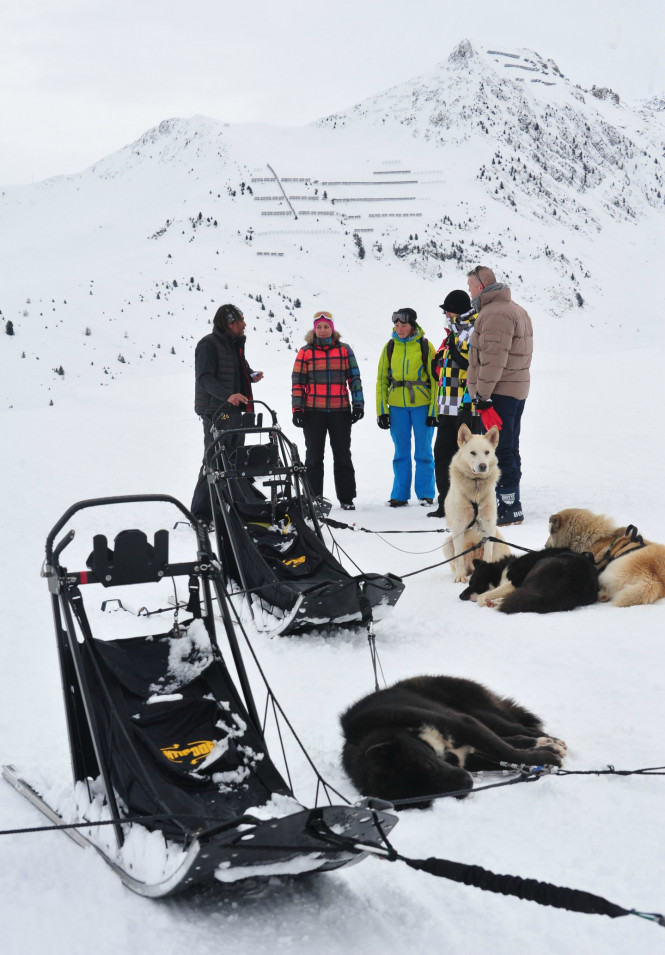 balade-chiens-de-traineau-activité-outdoor-evolution2